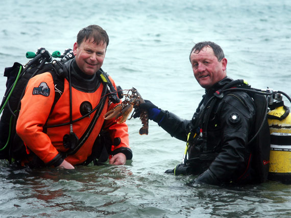 Picture of Bude Divers with baby lobster in Cornwall