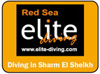 Picture of the Elite Diving logo