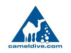 Picture of Camel Dive, Red Sea