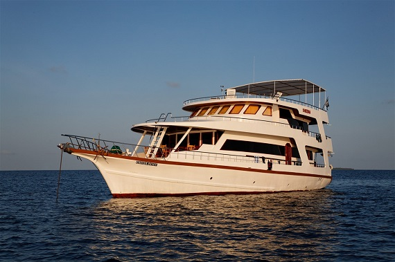 Sheena liveaboard in Bali